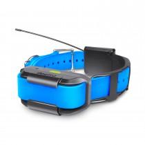 Dogtra Pathfinder Extra Collar Blue